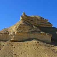 Пустынное безмолвие-5 :: Виктор Льготин