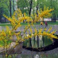 В Михайловском саду :: Татьяна Осипова(Deni2048)