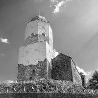 Выборгский Замок 1293 года :: ViP_ Photographer