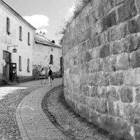 Выборгский Замок 1293 год :: ViP_ Photographer