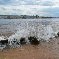 Невские берега :: Наталья Левина