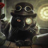 """SteamCat"" :: Евгений Морозов"