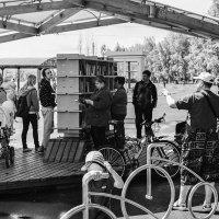 Библиотека под открытым небом. :: Валентин Жеребятников