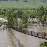 И не стало старого моста в Чарыше... :: Кристина Воробьева