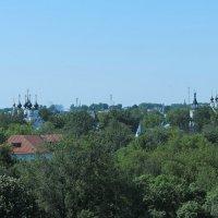 муромские купола :: Сергей Цветков