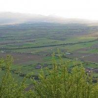 Алазанская долина :: Наталья Джикидзе (Берёзина)