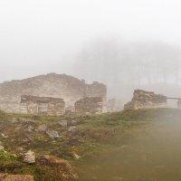 Туман в горах (Бечо, Грузия) :: Михаил Ермаков
