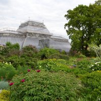 В ботаническом саду :: Наталья Левина