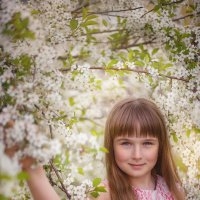 Весна :: Алексей Мартынов