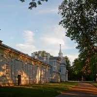 У стен Смольного монастыря :: Елена Гуляева (mashagulena)
