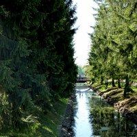 Екатерининский парк :: Мила Данковцева