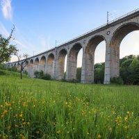 Viadukt Altenbeken :: Alexander Richter