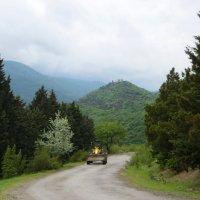 По дороге на Калобани :: Наталья Джикидзе (Берёзина)