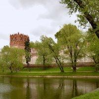 Новодевичий монастырь :: Владимир Болдырев