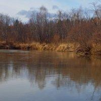 Осень на реке Туре. :: Сергей Комков