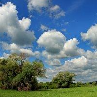 Уже по летнему кочуют облака... :: Лесо-Вед (Баранов)