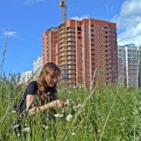 Лето :: Елена Федотова