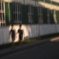 На дороге :: Людмила Синицына
