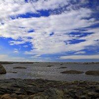 море в отлив :: Владимир Артюхов