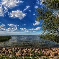 Другой берег залива :: Владимир Самсонов