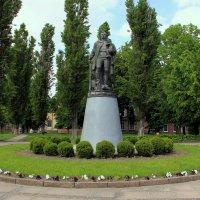 памятник Воину-освободителю :: Ольга