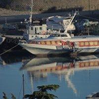 утро в порту :: Алексей Меринов