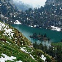 альпийский май :: Elena Wymann