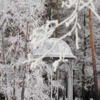 Зимняя сказка :: Наталья Гришутина
