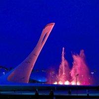 Олимпийский парк :: Дмитрий Редьков
