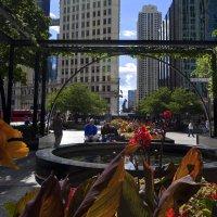 Чикаго :: Margarita Shrayner