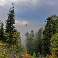 Туман в горах... :: Аnatoly Gaponenko