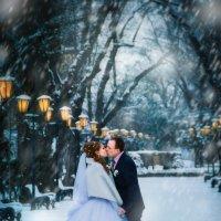 Морозный поцелуй :: Ольга Гудым