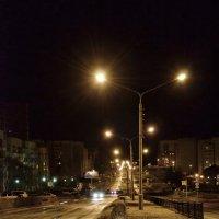 ночной Лесной :: Denis Osipov