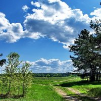 Зарастают памятью дороги... :: Лесо-Вед (Баранов)