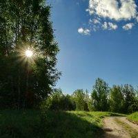 Доброго Вам утречка и хорошего настроения! :: Владимир Гилясев