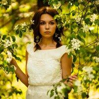 Яблоневый цвет :: Евгений Яковлев