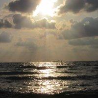 Море.... :: Герович Лилия