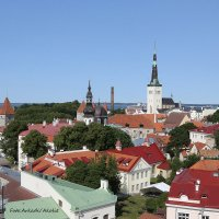Fotostuudio Akolit, Arkadi Baranov, Tallinn :: Аркадий  Баранов Arkadi Baranov