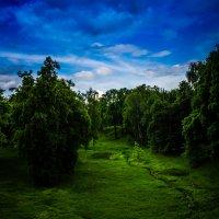 парк. :: Dashiki