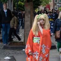 европейская японка :: Witalij Loewin