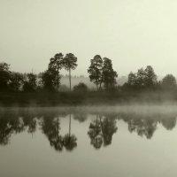 В тумане :: Светлана