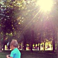 Солнечный Зайчик))) :: Olga N