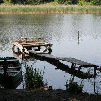 Красота у озера :: Tatiana Savelchenko
