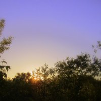 Волшебный восход солнца . :: Мила Бовкун