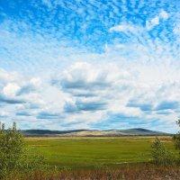 Облака над полем :: юрий Амосов