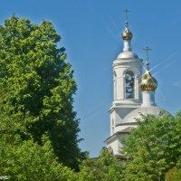 Золотые купола. :: Виктор Евстратов