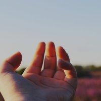 рай на земле существует. тебе нужно просто посмотреть вокруг :: TDaryaaa