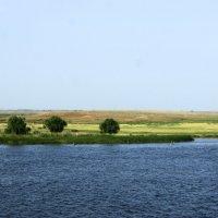 Волга - берег левый. :: Александр Владимирович Никитенко
