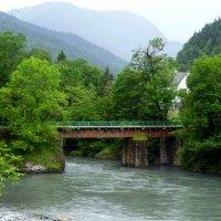 Кавказский природный биосферный заповедник :: Юлия Бабитко