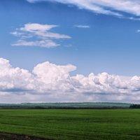 Русское поле... :: Дмитрий К